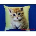 Dětský polštářek Kotě