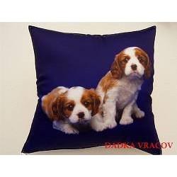 Dětský polštářek Dva béžovohnědí psi