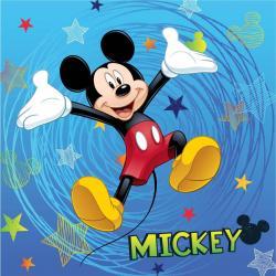 Dětský polštářek Mickey Mouse 2016