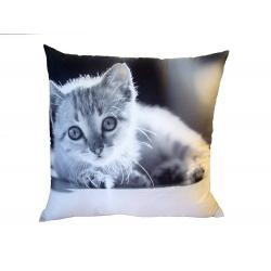 Fotopolštářek černobílé kotě 40x40