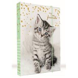 Dětský set boxů na sešity A4+A5 Kočka