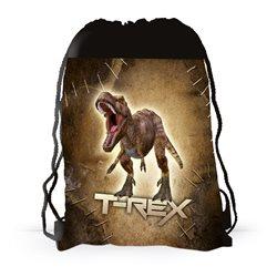 Dětský sáček na přezůvky T-Rex