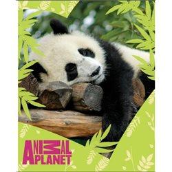 Dětská deka Panda 120x150 cm