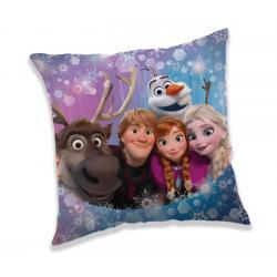 JERRY FABRICS Polštářek Frozen Family 40x40 cm