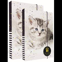 KARTON P+P Set boxů na sešity A4+A5 Kočka 2