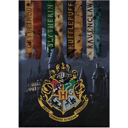AYMAX Fleece deka HARRY POTTER HUFFLEPUFF 100x140 cm